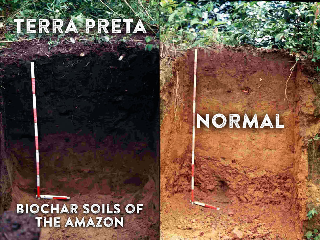 4-Terra-Preta-biochar-soils-of-the-Amazon