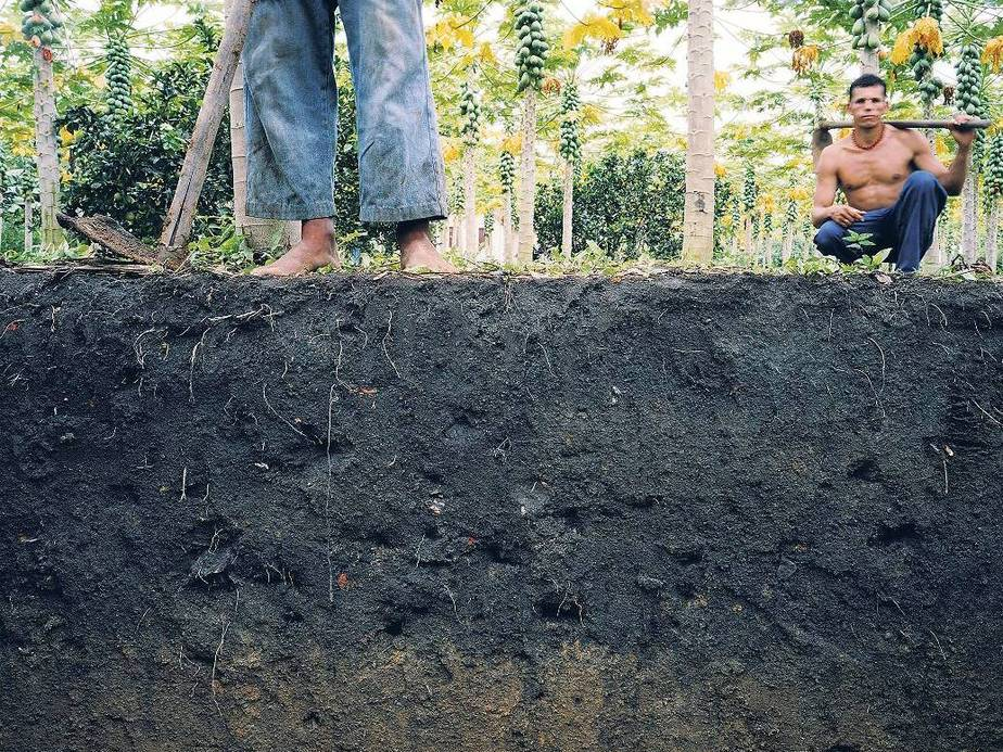 TERRA PRETA : AMAZONIAN SUPER-SOIL : ANCIENT WAYS OF BIO-DESIGNING RAINFORESTS