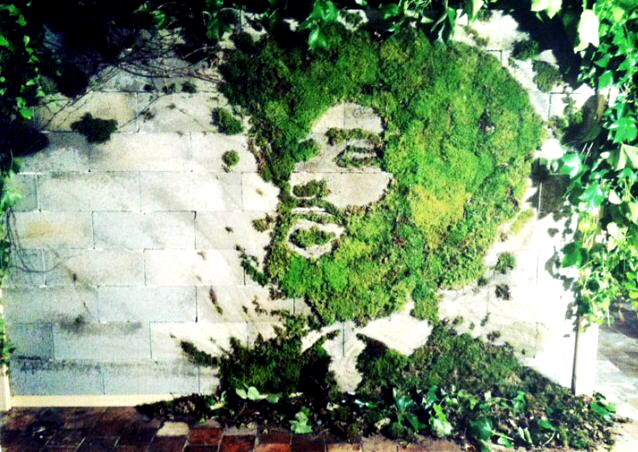 "MOSS GRAFFITI: RECIPE FOR ""LIVING ART"""