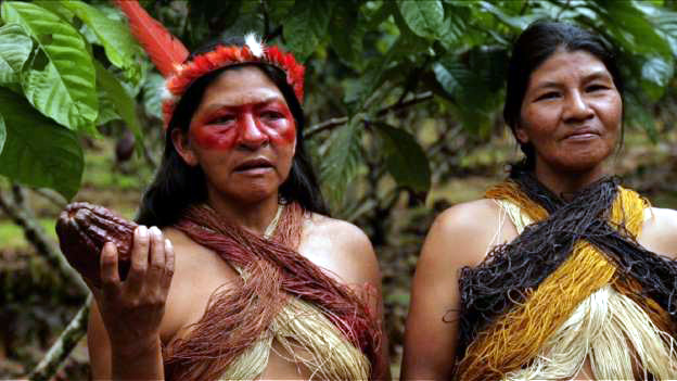 AMAZON PEOPLES TAKE BOLD ACTION TO SAVE RAINFOREST : OWN GOVERNMENT, COCOA FARMING & MANAGING FISH STOCKS