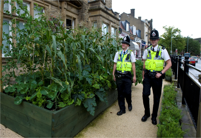 TODMORDEN: THE INCREDIBLE EDIBLE TOWN