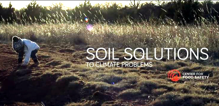 SOIL: A LIVING MIRACLE : SECRET WEAPON TO FIGHT CLIMATE CHANGE IS BENEATH OUR FEET